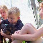 Ruthie, baby goat, with children